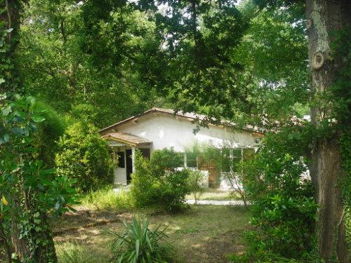 Maison Lege Cap Ferret - 6 personnes - location vacances  n°27020