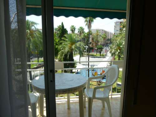 Flat Gandia - 4 people - holiday home  #27092
