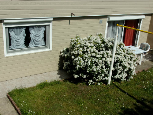 Flat Saint-malo - 4 people - holiday home  #27506