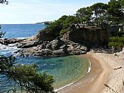 Playa de aro -    huisdieren toegestaan (hond, kat... )