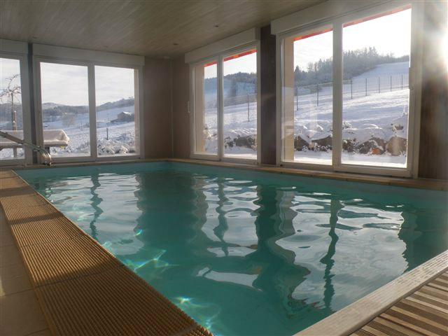 Chalet Gerardmer - 10 people - holiday home  #28114