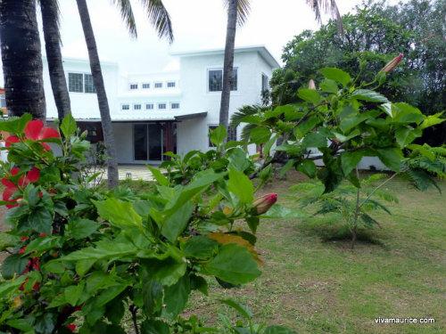 Maison Blue Bay - 8 personnes - location vacances  n°28118
