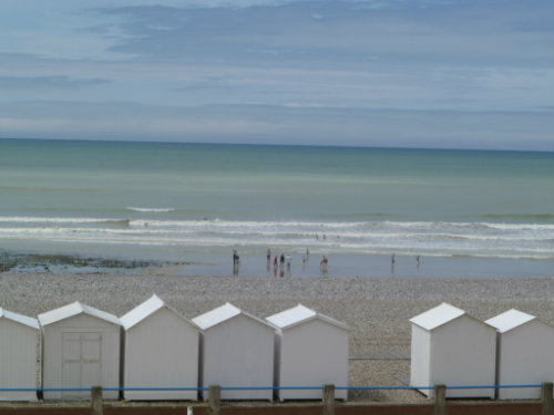 Flat Criel Sur Mer - 6 people - holiday home  #28361