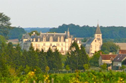 Maison Saint-aignan Sur Cher 41 - 5 personnes - location vacances  n°28506