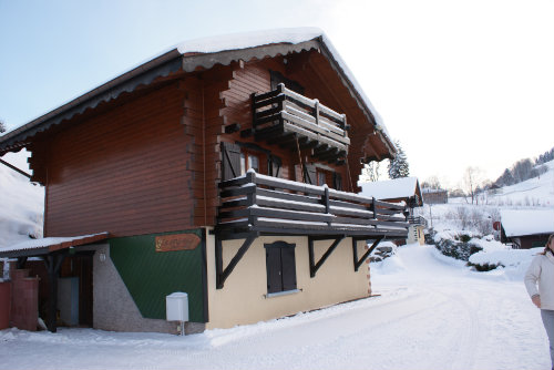 Chalet La Bresse - 15 people - holiday home  #28881