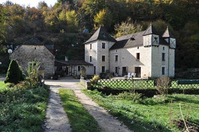Gite Salignac Eyvigues - 18 personnes - location vacances  n°29124