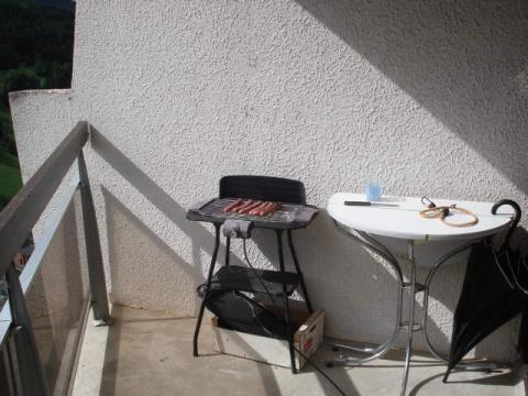 House Villard De Lans - 4 people - holiday home  #29147