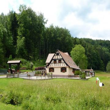 House Wangenbourg - 4 people - holiday home  #29405