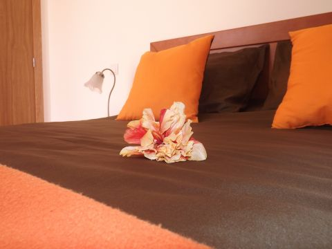 Maison Funchal - 6 personnes - location vacances  n°29436
