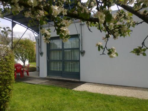 Gite Noidans-le-ferroux - 6 people - holiday home  #29445
