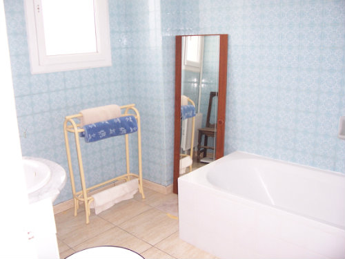 Gite in Alzonne Carcassonne - Vacation, holiday rental ad # 29635 Picture #3
