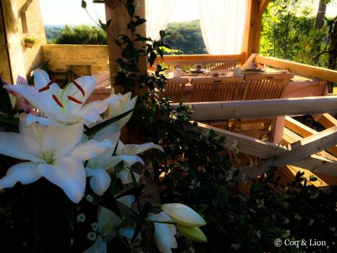 Bed and Breakfast Salvagnac-cajarc - 7 people - holiday home  #30370