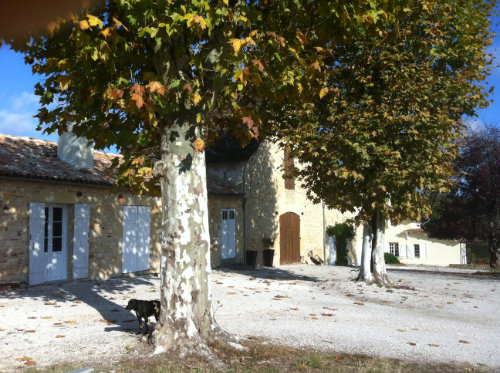 Gite Bergerac - 8 people - holiday home  #30432