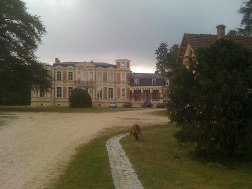 Castle Salbris - 10 people - holiday home  #30807
