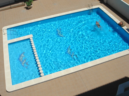 Flat El Campello - 4 people - holiday home  #30880