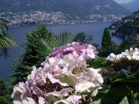 Flat in Como - blevio for   5 •   view on lake
