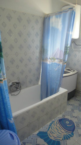 House in Djerba - Vacation, holiday rental ad # 31018 Picture #13