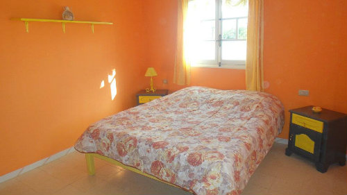 House in Djerba - Vacation, holiday rental ad # 31018 Picture #3