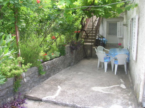 House Kotor - 10 people - holiday home  #31106