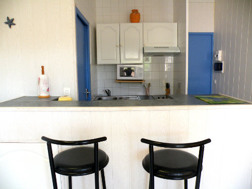Flat in Saint-Cyprien Plage - Vacation, holiday rental ad # 31168 Picture #1