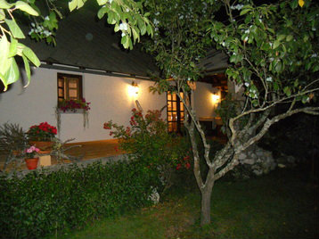 House Bled  - 4 people - holiday home  #31279