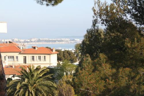 Flat in Cannes - Vacation, holiday rental ad # 31480 Picture #0