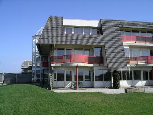 Appartement Buren, Ameland - 5 personen - Vakantiewoning  no 31530
