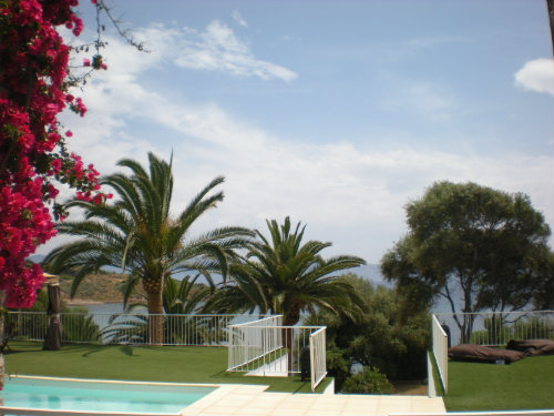 House in Cargese - Vacation, holiday rental ad # 31700 Picture #1