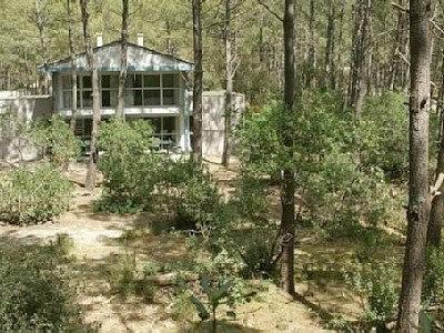 Maison Lacanau Océan - 7 personnes - location vacances  n°31872