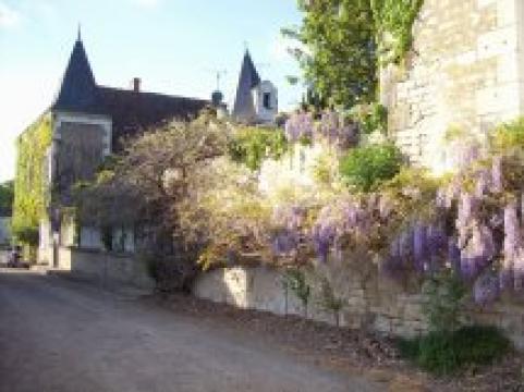 Maison Champigny Sur Veude - 10 personnes - location vacances  n°31962