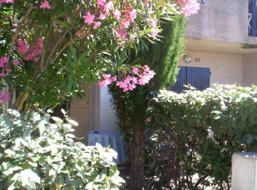 House in Gruissan - Vacation, holiday rental ad # 32070 Picture #3
