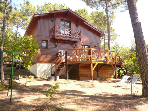Chalet Carcans-maubuisson - 6 people - holiday home  #32199