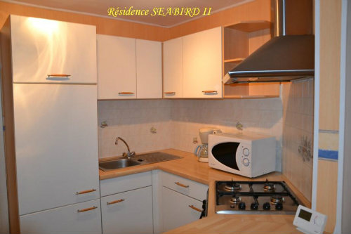 Flat in La Panne - Vacation, holiday rental ad # 32311 Picture #3