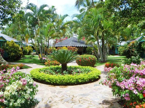 Maison Las Terrenas - 4 personnes - location vacances  n°32343