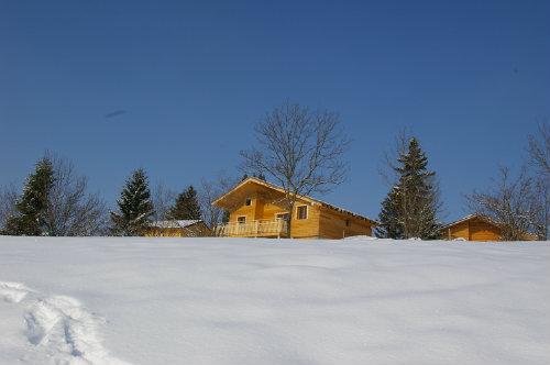 Chalet Saint Laurent En Grandvaux - 8 personnes - location vacances  n°32522