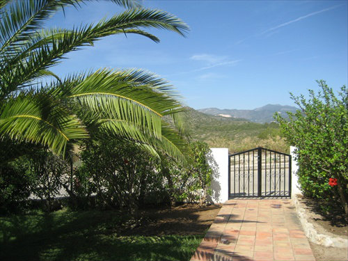 House in oliva  - Vacation, holiday rental ad # 32736 Picture #3