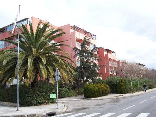 Appartement Le Lavandou - 3 personnes - location vacances  n°32942