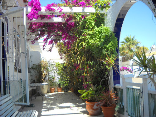 House in LOS ALCAZARES - Vacation, holiday rental ad # 32985 Picture #5