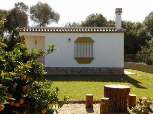 Maison Caños De Meca - 4 personnes - location vacances  n°33530