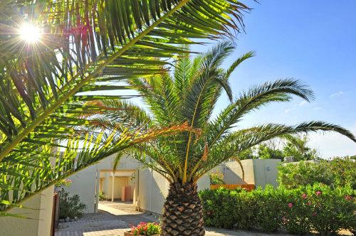 Appartement Le Barcares - 4 personnes - location vacances  n°33560