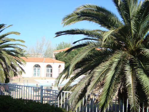 Flat in Canet en roussillon - Vacation, holiday rental ad # 33576 Picture #1
