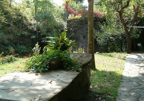 Farm in Borgo Val di Taro - Vacation, holiday rental ad # 33789 Picture #5