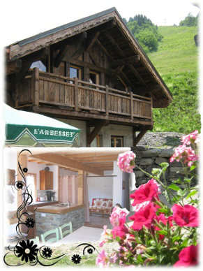 Chalet 10 people Saint Colomban Des Villards - holiday home  #34314