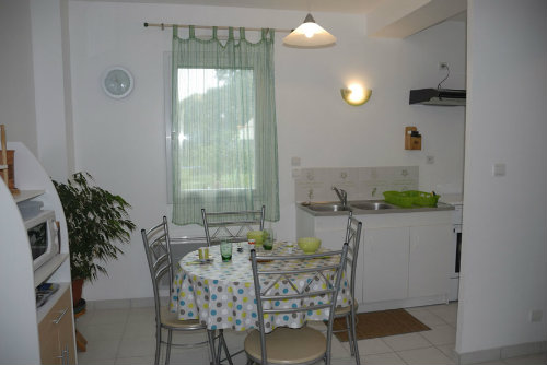 Gite 4 people Pont Aven - holiday home  #34366