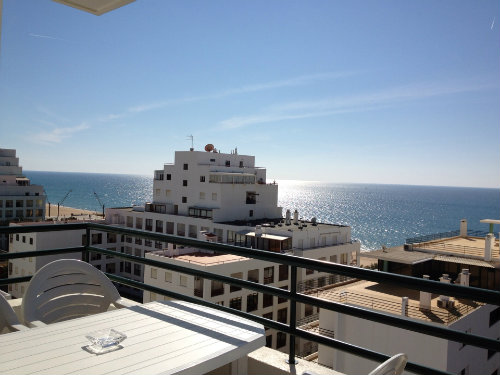 House in Marbella for   4 people  #34650