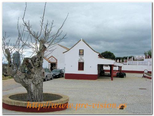 Maison Medina Sidonia - 6 personnes - location vacances  n°34653