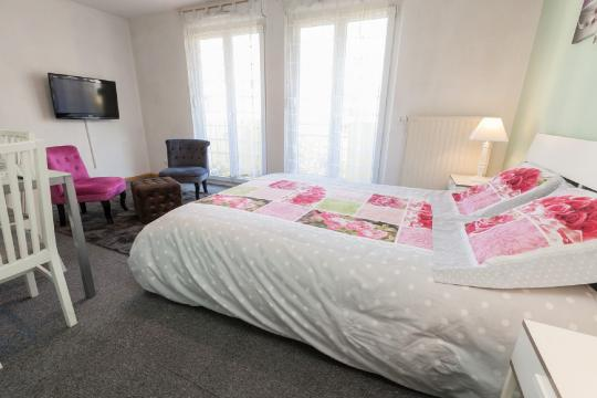 Studio in Strasbourg - Vacation, holiday rental ad # 34897 Picture #1
