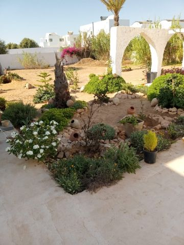 House in Djerba - Vacation, holiday rental ad # 34993 Picture #7