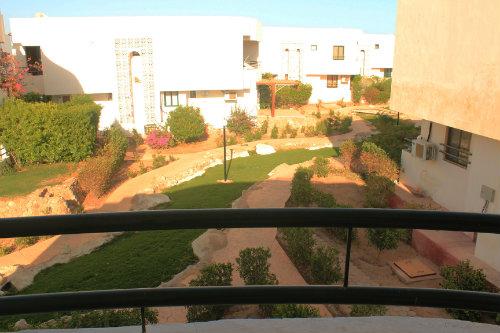 Sharm el sheikh -    1 chambre