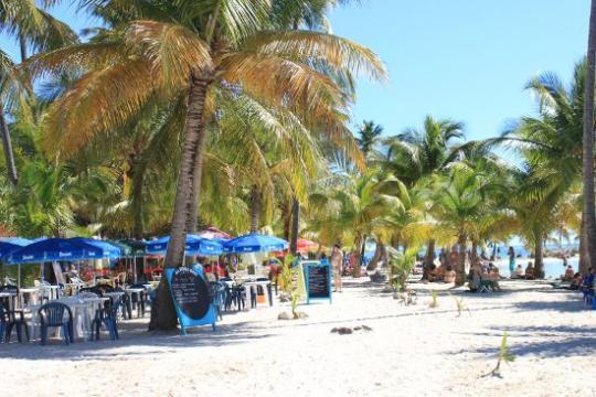 Location Guadeloupe Vacances à partir de 300€/semaine  n°35679